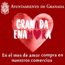 Disfruta de los comercios del centro de Granada en febrero.