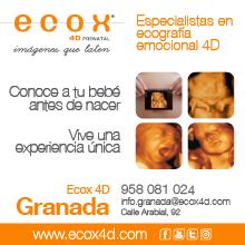 Ecox, imágenes que laten