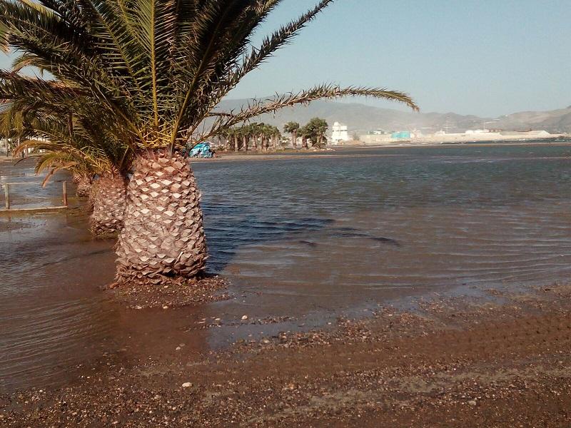 Imagen de la playa de Poniente este jueves.
