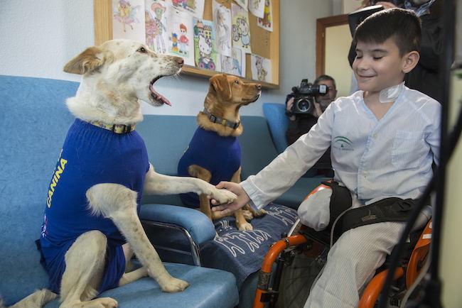 Uno de los pacientes interactúa con Garbanzo.