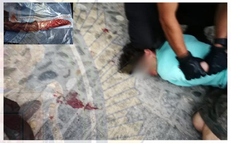 El agresor fue detenido por agentes de la Policía Local de Granada, momento que recoge la fotografía.