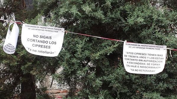 Mensajes colocados junto a los árboles.