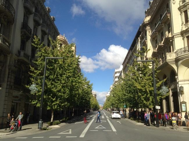 En la actualidad. Los árboles tapan ya las plantas bajas, los entresuelos y, en algunos casos, las primeras plantas de los edificios. Esta foto está tomada desde la acera del monumento a Isabel la Católica.