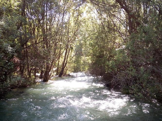 Río Genil entre Granada y Cenes.