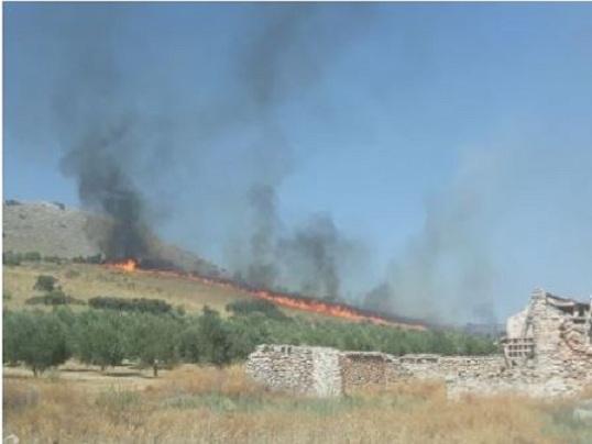 El fuego calcinó siete hectáreas.