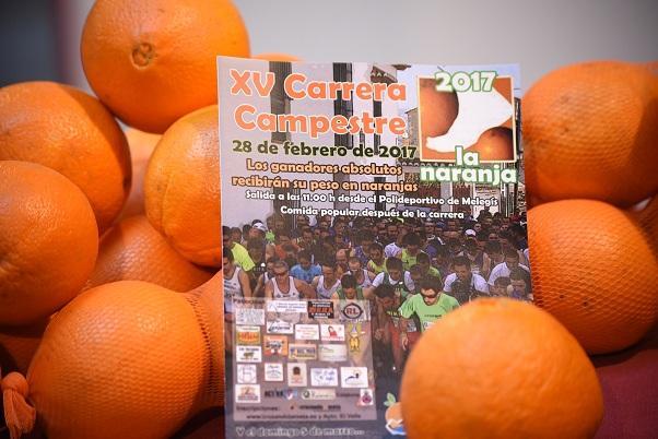 Las naranjas, emblema del Valle de Lecrín.