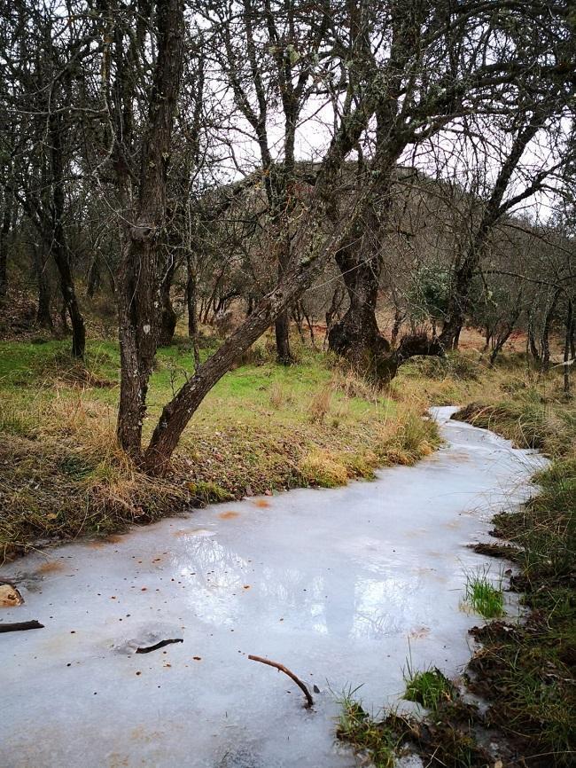 El río Fardes, helado, en Prado Negro.