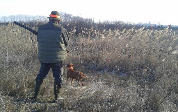 La promoción de la caza en la enseñanza pública fue aprobada por Cs, PP y Vox.