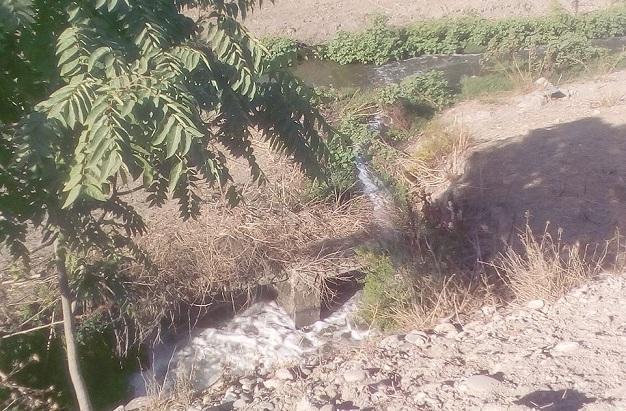 Vertidos de aguas residuales en el Genil a su paso por la Vega.