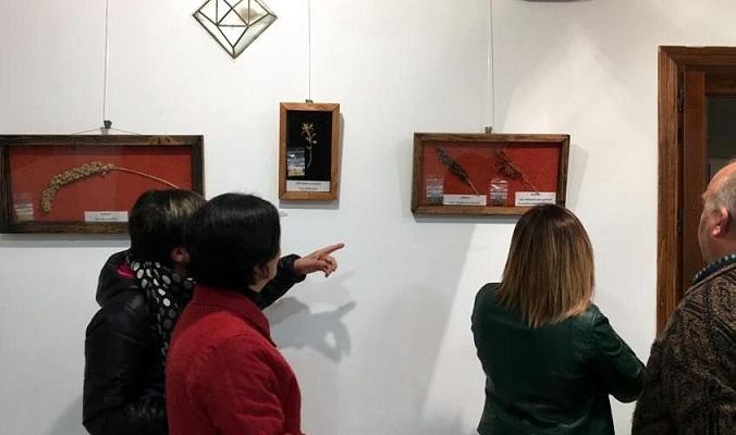 La exposición se puede ver hasta el 26 de noviembre.