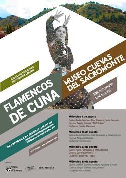 Cartel del ciclo 'Flamenco de Cuna'.