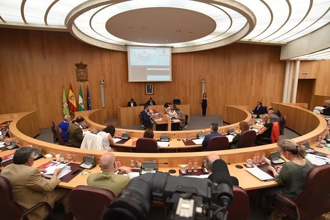 Pleno de la Diputación celebrado este jueves.