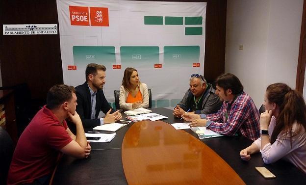 Reunión de los colectivos con el grupo del PSOE.