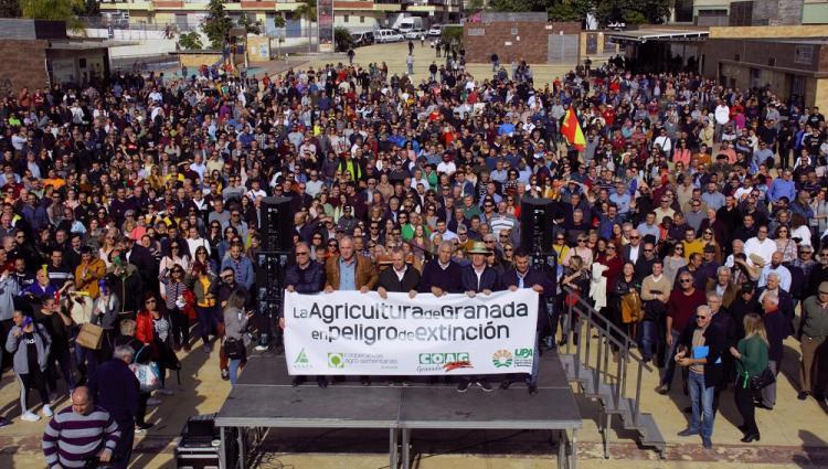 Al término de la marcha se ha leído un manifiesto en defensa del sector hortofrutícola.