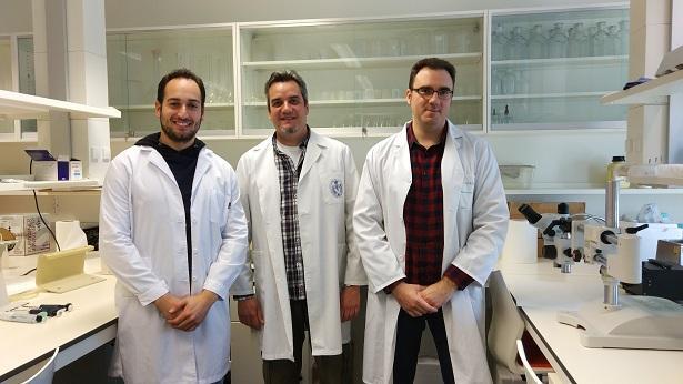 De izquierda a derecha, los investigadores que participan en este trabajo: Miguel Ángel Tejada, Cruz Miguel Cendán y Francisco Nieto.