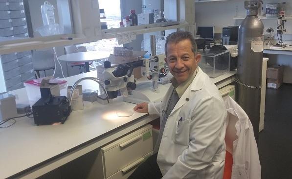 El profesor Ahmad Agil Abdalla, en su laboratorio de la UGR.