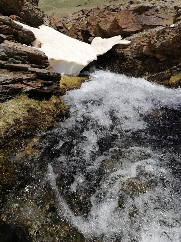 El agua es un espectáculo en Sierra Nevada.