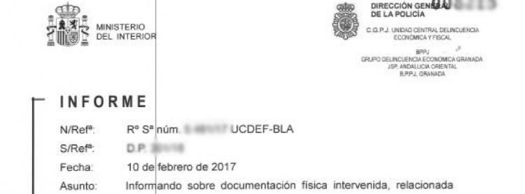 Detalle del informe de la UDEF.