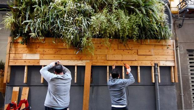 Desmontaje de un 'jardín vertical en la calle Moral de la Magdalena.