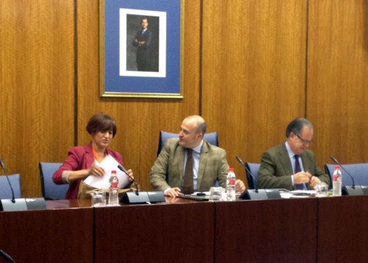 Marina Martín, en su comparecencia parlamentario.