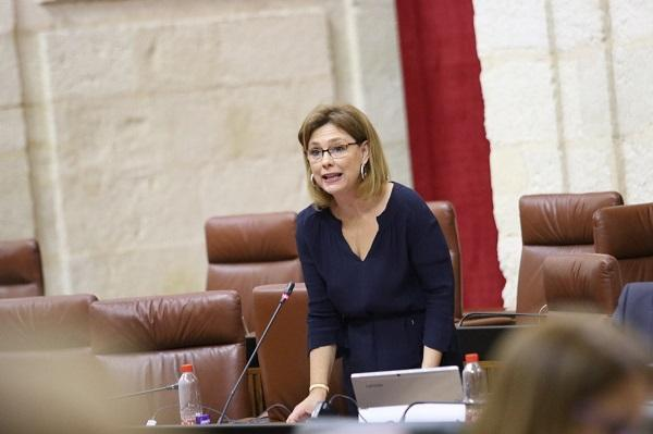 Mar Sánchez en el Parlamento.