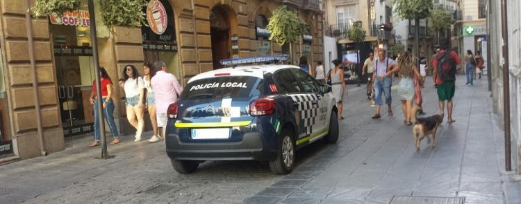Vehículo de la Policía Local a la entrada de Mesones.