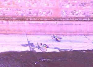 Bicicletas de Ofo arrojadas al cauce urbano del río Genil.