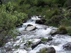 Río Genil.
