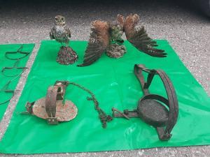 Los agentes decomisaron cepos y trampas prohibidos y animales disecados.