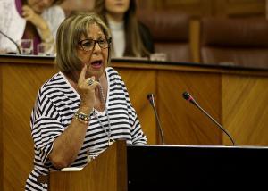 La consejera en una intervención en el Pleno del Parlamento.