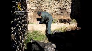 Imagen de la operación de la Guardia Civil.