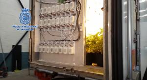 Remolque de un camión en el que se cultivaba marihuana.
