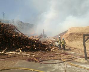 Los Bomberos trabajan en la extinción del fuego.