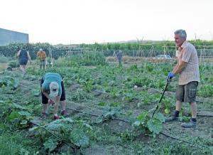 Participantes de la Escuela de Agroecología, en uno de los huertos.