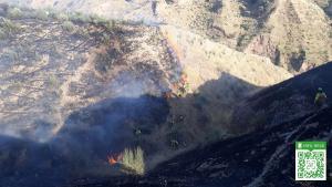 Imagen de las labores de extinción sobre el terreno en el incendio de la capital.
