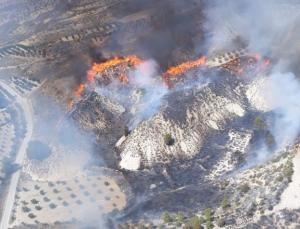 En la imagen aérea del fuego se aprecia la virulencia de las llamas.