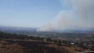 El incendio se ha declarado junto a la A-44 en dirección a Motril.