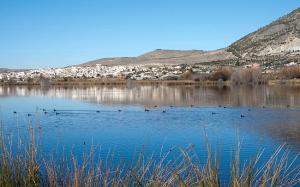 Laguna de Padul.