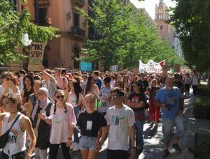 El paso de la manifestación por Gran Vía.