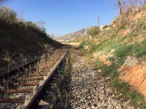 Aspecto abandonado que presenta la vía del tren.