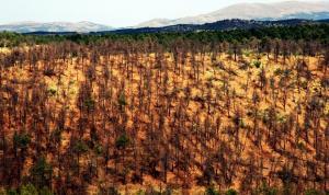 Imagen de la Sierra de Baza distribuida por el grupo municipal.