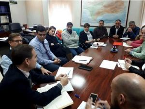 Reunión de los municipios con responsables de Endesa.