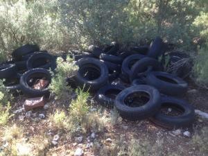 Imagen de los neumáticos acumulados en un paraje del espacio protegido.