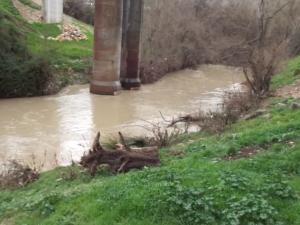 Aspecto que presentaban este lunes los pilares del viaducto de Puente Quebrada, en Loja.