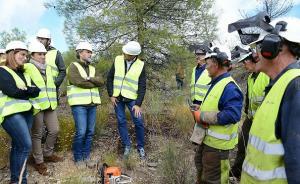 Visita de autoridades de la Junta a los trabajos en la Sierra de Baza.