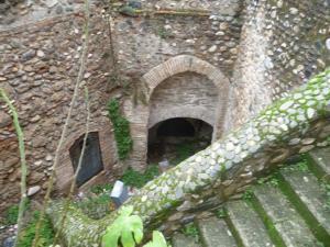 Ajibe de San Cristóbal.