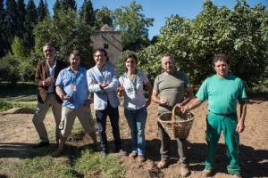 Presentación del cultivo de azafrán en el Generalife.