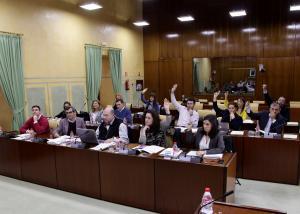 Imagen de la votación del dictamen.