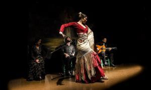 La bailaora Cristina Aguilera.