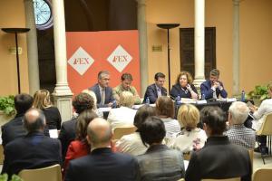 Presentación institucional del FEX.